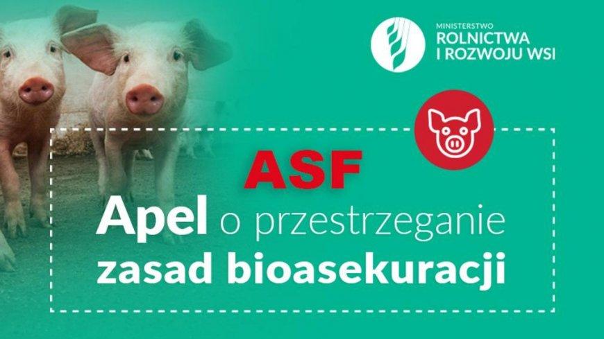 """grafika przedstawiająca w tle dwa prosiaki, na pierwszym planie napis """"ASF Apel o przestrzeganie bioasekuracji. Ministerstwo Rolnictwa i Rozwoju Wsi"""""""