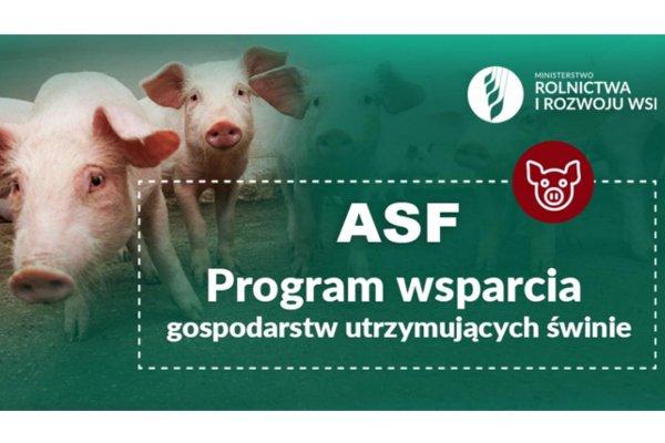 Obrazek z zielonym tłem, a na nim dwie świnki po lewej stronie. Na prawo biały napis: Ministerstwo Rolnictwa i Rozwoju Wsi, poniżej na środku w ramce również biały napis ASF Program wsparcia gospodarstw utrzymujących świnie.